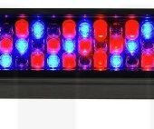 Stairville Led Bar 240-8